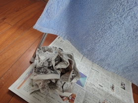 洗濯物と新聞