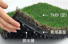 トヨタ人工芝TM9-4