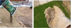 芝生の目土と肥料