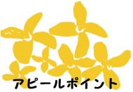 design_img_f_979170_s