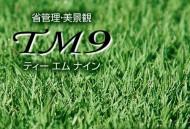 トヨタ人工芝TM9