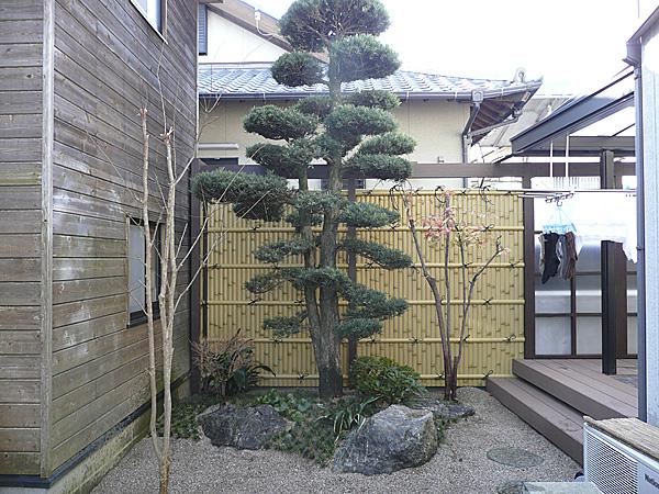 木が引き立つ竹垣
