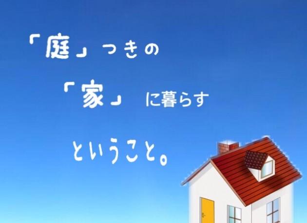 image1 (12)
